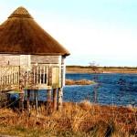 birdhide2 Lough Boora